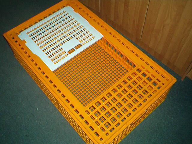 Ящик для бройлера